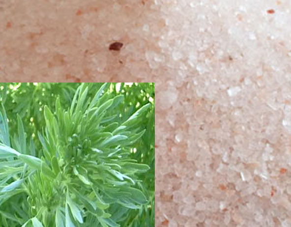 Pink salt and wormwood- simple and effective remedy to cure vertigo (head spinning) for good