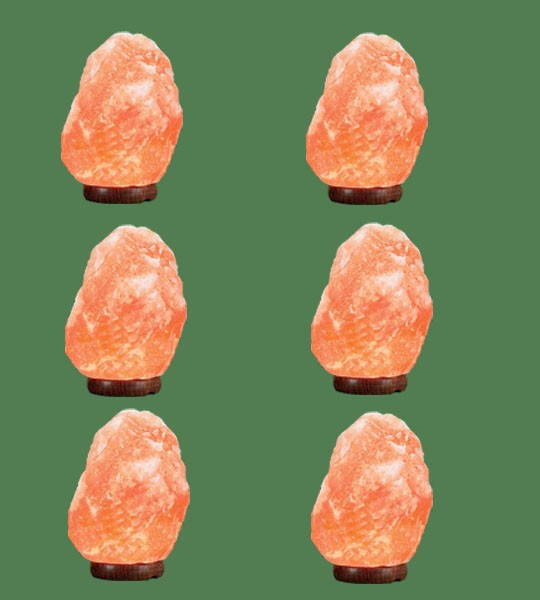 Himalayan Salt Lamp Natural Pink Micro 6 units (3-5 lbs each)