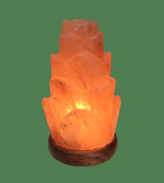 Pink Sea Salt Lamps : Lamp Shaped Pink